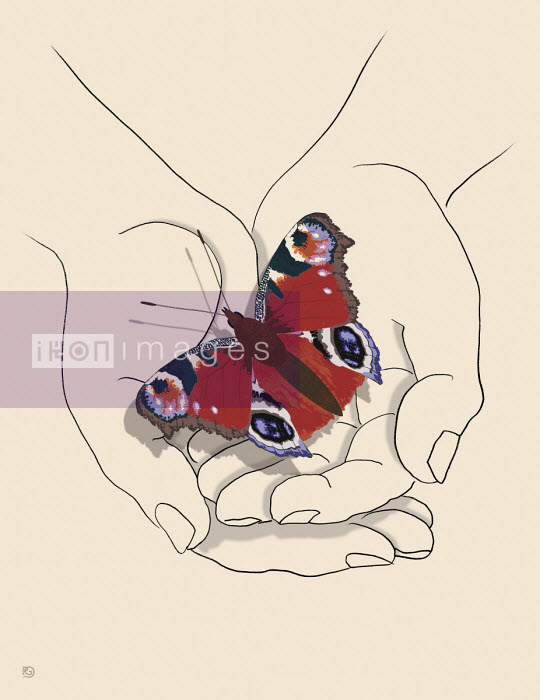 Butterfly in cupped hands - Paul Garland