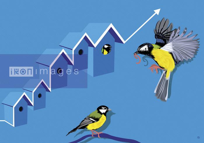 Great tit feeding family in rising birdhouse graph - Paul Garland