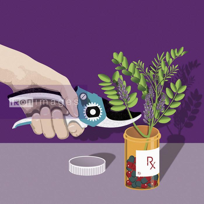 Prescription drugs and natural remedies - Paul Garland