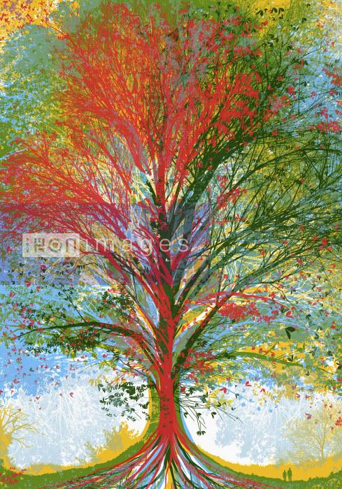Multi coloured tree - Chris Keegan