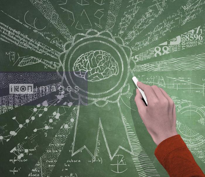 Hand drawing rosette for brain on blackboard - Boris Séméniako