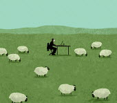 Man wearing face mask working at desk in field of sheep